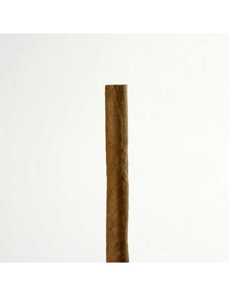 Moods Filter 20 Cigarillos Moods