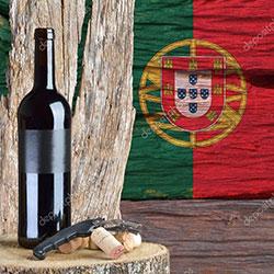 Vin Portugalia